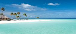 TUTTO MALDIVE